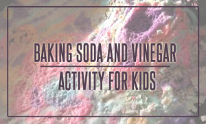 Baking Soda and Vinegar Activity