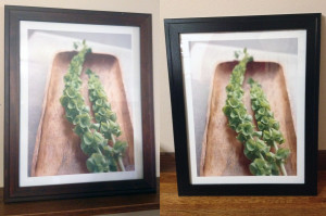 Frame Upcycle